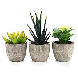 Artificial Succulent Plants Series Plastic Decorative Grass Collection 2 of T4U, Pack of 3
