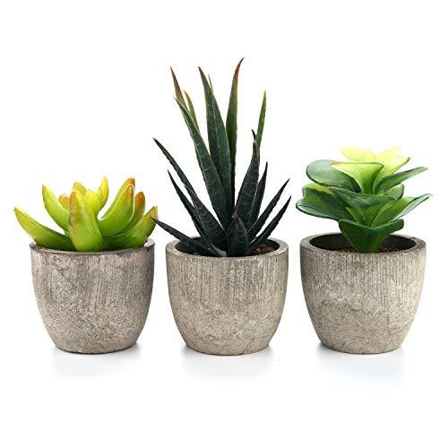 T4U 3er Set Mini Künstliche Sukkulenten Dekorative Kunstpflanze Bonsai mit Topf - Sammlung 2