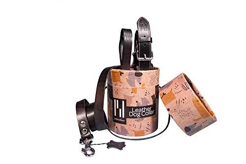Prothelis 2-delige set hondenhalsband en hondenriem 'Classic', Halsband 33-40 cm, zwart