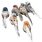 LjzlSxMF Pájaros de Pluma Artificiales Clip Colorido en pájaros de Espuma Falsa Garden Garden Figurines Ornament 6pcs