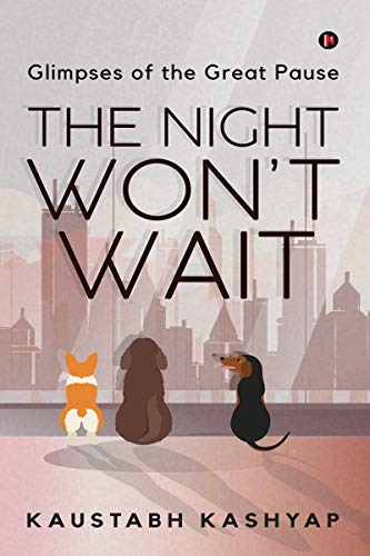 THE NIGHT WON'T WAIT : GLIMPSES OF THE GREAT PAUSE (English Edition)