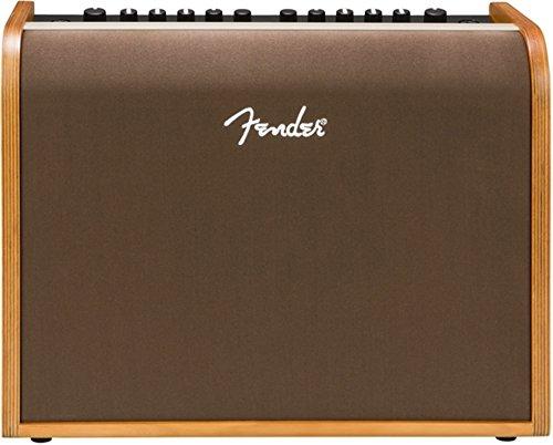 Fender Akustik 100