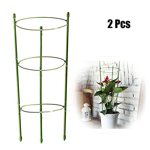 YCAXZSH Plant Support Stakes,Durable Climbing Plant Support Cage For Garden Trellis Tomato Flowers Stand Garden 2 Pcs