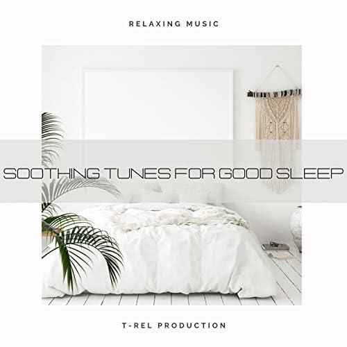 Sleep Noise & Sleepy Noise