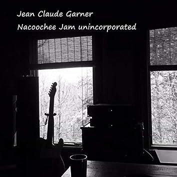 Nacoochee Jam unincorporated