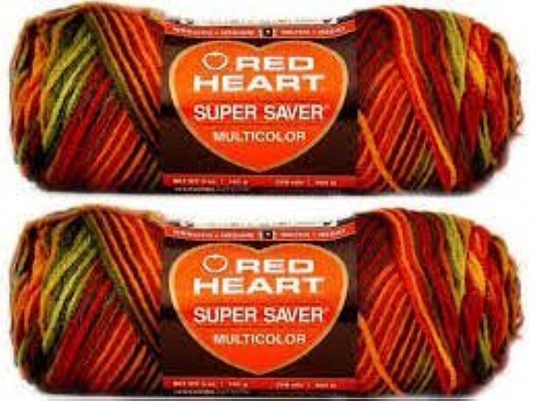 Bulk Buy: Red Heart Super Saver (2-pack) (Fall)