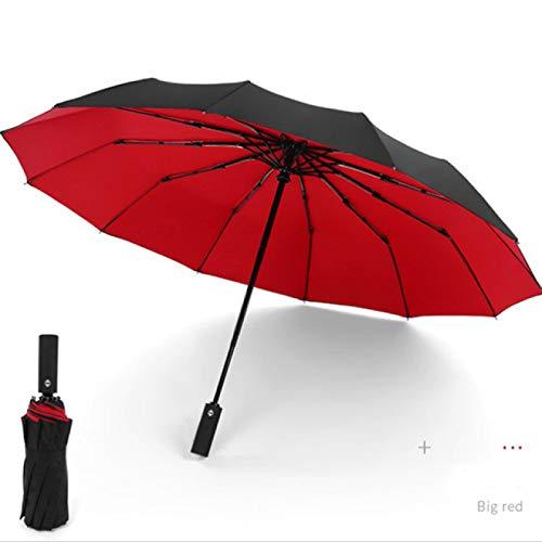 Aiong Regenschirm, winddichter doppelter automatischer Klappschirm weiblich männlich 12 Knochen Auto Luxus LargeUmbrellas