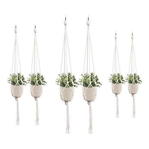 Koytoy 6 Stück Makramee Blumenampel,Baumwollseil Hängeampel Blumentopf Robust Makramee Pflanzenhalter Blumenampel für Innen Außen Decken Balkone Wanddekoration