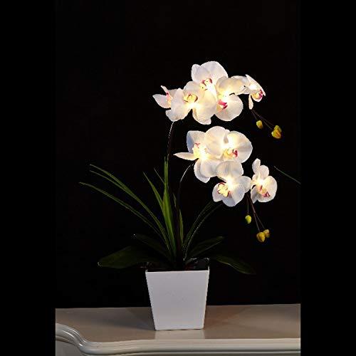 Floristlighting Künstliches Orchideen-Arrangement, 9 Lichter, Beleuchtung mit 2AA LEDs weiß