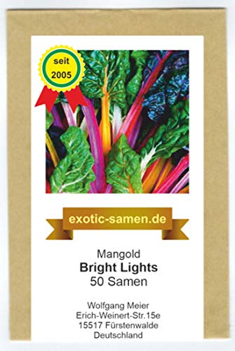 Mangold - Bright Lights - 50 Samen