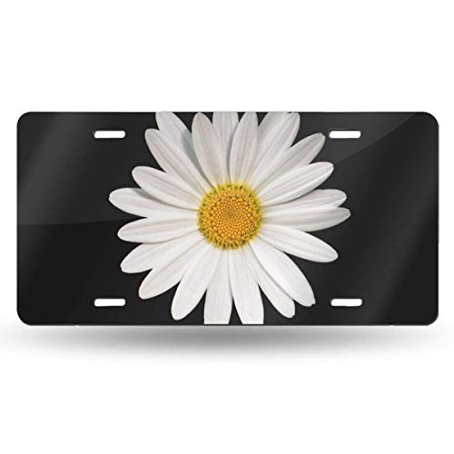 Lawenp QNOQ White Daisy Design Pattern Durable and Strong Aluminum Car License Plate 6inch X 12inch