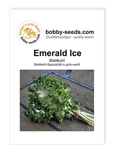 Emerald Ice Bündelkohl von Bobby-Seeds Portion