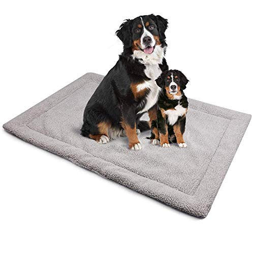 ALLISANDRO Hundematte waschbare Hundedecke hygienische rutschfeste und weiche Decke 80x60cm 100x70cm 120x80cm mit kuscheligem Micro Plüsch Oberfläche Leinwand Zurück Duplex-Einsatz Grau