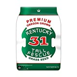 Premium Oregon Grown Kentucky 31 Tall Fescue Grass Seed (5 LBS)