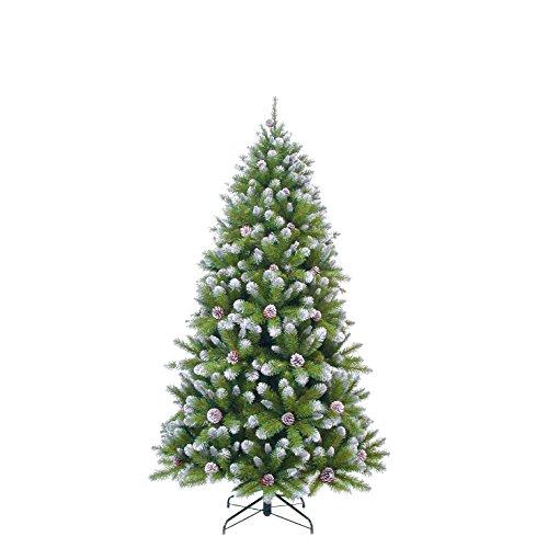 Triumph Tree Empress Spruce – Árbol de Navidad