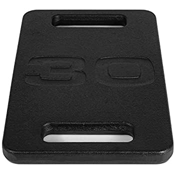 Yes4All 30 lb Ruck Weight – Best Cast Iron Ruck Weight for Walking Jogging and Running