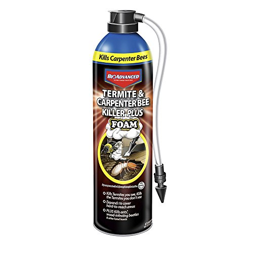 BioAdvanced 700420A Termite & Carpenter Bee Killer Plus Pesticide, 18 oz, Foam Spray