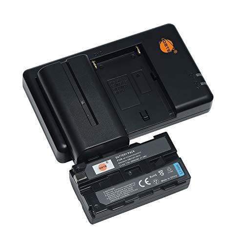 NP-F550 F570 - Batería de repuesto recargable y cargador dual compatible con Sony NP-F750, NP-F970, HandyCams, Neewer Nanguang CN-160, CN-126 Series Cámara, videocámara, cargador de batería npf, etc.