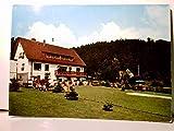Bad Herrenalb. Landhaus Gehrt. Alte AK farbig, ungel. ca 60ger Jahre. Gebäudeansicht, Gartenanlage, Liegewiese mit Personen.