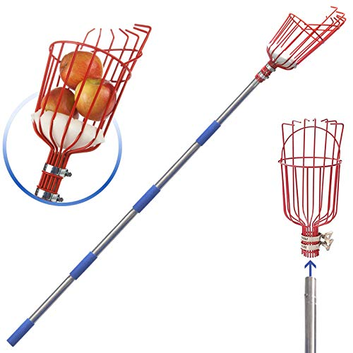 diig Fruit Picker 55 Foot Fruit Picker Tool with Stainless Steel Connecting Pole Fruit Picking Equipment for Getting Fruits Lemons Apples Guavas Avocados Pears Mangoes Oranges Citrus