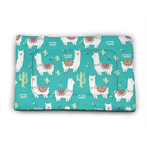 Medium Dog Bed Mat Wasbaar Krattenmatras 35 Inch Niet Slip Huisdier Kussen Pad Llama Alpaca Cactus Mint Groen Oogschaduw, 35