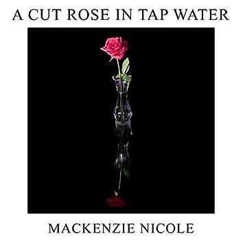 A Cut Rose In Tap Water