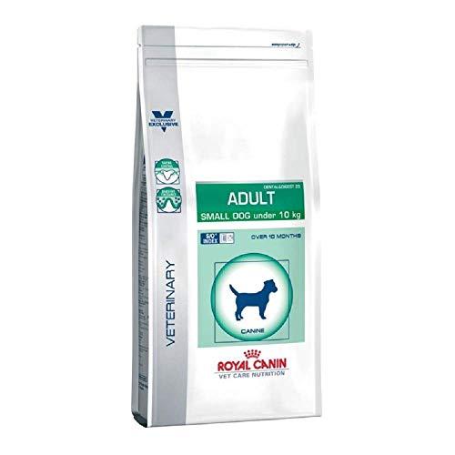 RoyalCanin Adult Small Dog 2 kg Especial Razas Minis y Pequeñas | Pienso Gastrointestinal para Perros Adultos con Problemas Digestivos y Bucales | Comida Intestinal Seca Que Elimina el Sarro Dental