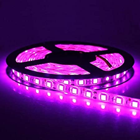 16.4ft LED Strip Lights LED Tape Light 300 LED Plug Chipark LED Strips Lights