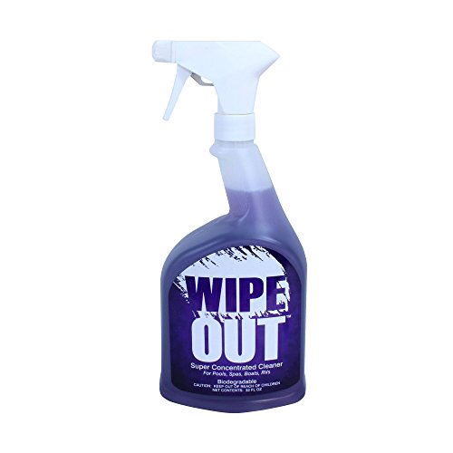 Wipe Out 6012 All Purpose Surface Cleaner for Swimming Pools - 1 qt.