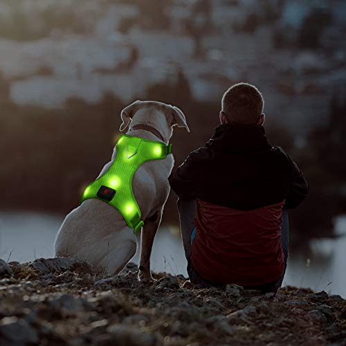 LED Dog Harness, Easy Control Led Dog Vest Harness with Adjustible Belt, USB Rechargeable Dog Harness Collar with Comfortable Padded for Small Medium Large Dogs (L,Green)