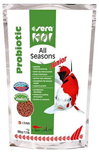 sera Koi Junior All Seasons Probiotic (bis 15cm) das innovative Koifutter mit Probiotika, dadurch wachsen Koi schnell & ausgewogen, erkranken seltener und geringere Wasserbelastung sowie weniger Algen