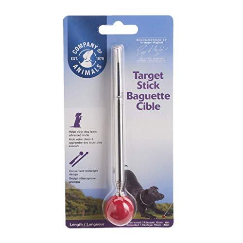 Clix Target Stick Ausbildungshilfe