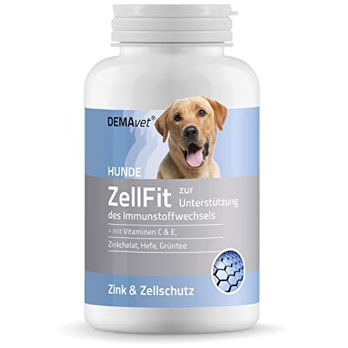 DEMAvet® ZellFit Nahrungsergänzungsmittel für Hunde Zellen & Immunsystem | Von Tierärzten entwickelt | Grüntee-Extrakt, Vitamine, Spurenelemente, Zink 120 Tabletten