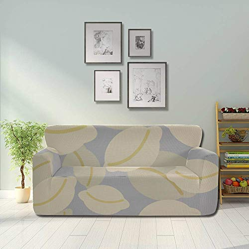 Generies Dumplings Delicate Compact Sofa Seat Covers Stretch Slipcovers Fitted Furniture Protector 2&3 Seat Sofas