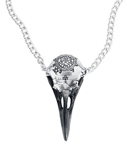 Alchemy Gothic Volvan Raven Skull Unisex Necklace Silver-Coloured, Pewter,