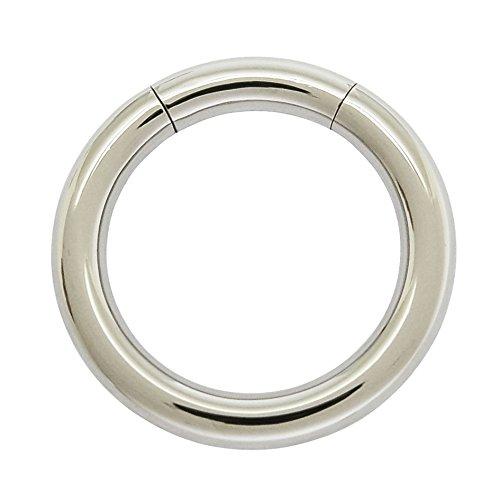 ACECHANNEL G2 Titanium Body Piercing Segment Hoop Rings (3015)