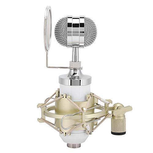 Kit de Micrófono Universal,Micrófono Condensador Karaoke con Soporte a Prueba de Golpes,Micrófono Multifuncional con Filtro Pop de Sensor de Gradiente de Presión 34,Alta Sensibilidad Micrófono