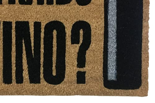 KOKO DOORMATS felpudos Entrada casa Originales, Fibra de Coco y PVC, Felpudo Exterior Has traído el Vino?, 40x60x1.5 cm | Alfombra Entrada casa Exterior | Felpudos Divertidos para Puerta