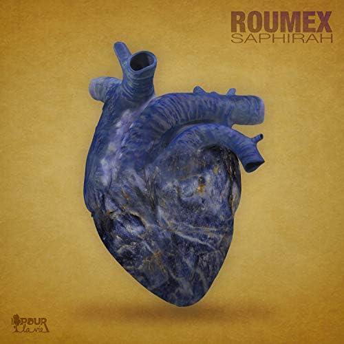 Roumex