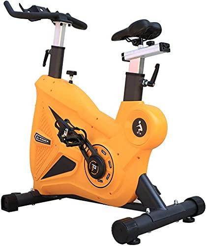 NBLD Bicicleta giratoria Bicicleta de Ejercicio para Interiores, Gimnasio en casa, Bicicleta giratoria, con Soporte para teléfono móvil y Soporte para Botella, Bicicleta estacionaria con Sistema