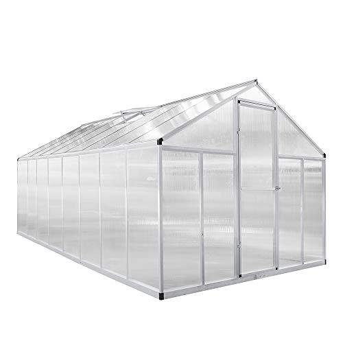 wolketon Zelsius Aluminium Gewächshaus für den Garten Platten | Vielseitig nutzbar als Treibhaus, Tomatenhaus, Frühbeet und Pflanzenhaus (480 x 240 x 205 cm)