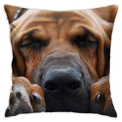 Golden Retriever Dog Fundas de Almohada Personalizadas Fundas de Almohada Throw Pillow Funda de cojín Cómoda Funda de Almohada Funda de Almohada Sofá Decoración del hogar 18 'x 18' Pulgadas