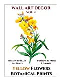 Wall Art Decor: Botanical Prints Yellow Flowers - 12 Ready to Frame Beautiful Art Illustrations - 2 Format & 4 Options to frame - Matching White ... Decorations Vol. 4 (Instant Wall Art Books)