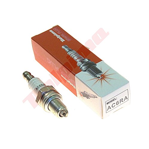 Dolpima 5 Piezas de Spark Plug Mini (CMR6A, Z8/Z9Y)