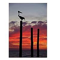 Qqwer オーストラリアの日没日の出アート風景ポスター壁アート写真キャンバス絵画リビングルームの装飾用-50X70Cmx1Pcs-フレームなし