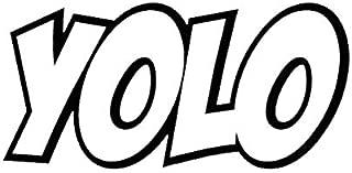 EW Designs Yolo Sticker Decal Vinyl You Only Live Once Bumper Sticker Vinyl Sticker Car Truck Decal 5