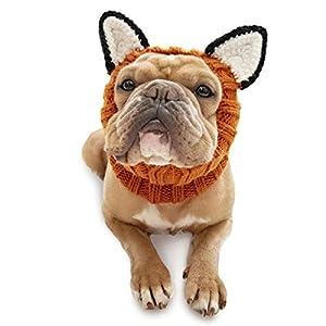 Zoo Snoods Fox Dog Costume – Neck and Ear Warmer Hood for Pets (Medium)