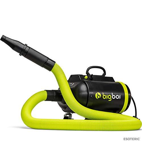 ESOTERIC BigboiBlowR PRO Professional Level Air Dryer