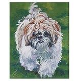 bricolaje Pintar Por Numeros Kit Animales Perro Bichón Habanero Kit de pintura al óleo para niños y adultos