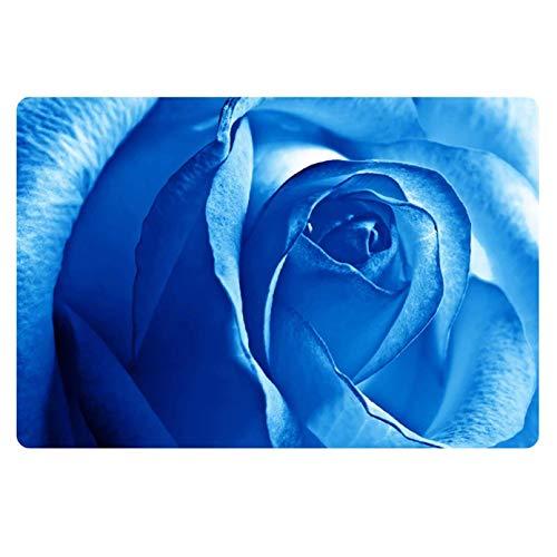 Alfombra de entrada para puerta con impresión 3D, color azul, alfombra de cocina, decoración del hogar, flores vintage, antideslizante, alfombrilla para interiores y exteriores, 60 cm x 90 cm